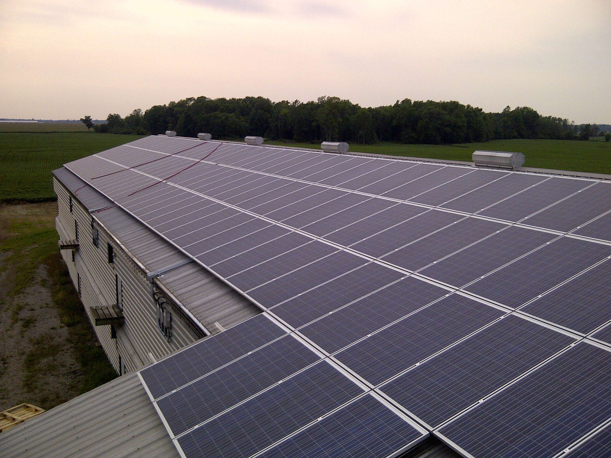 Swiss light poultry solar solutions